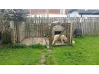 Good Dog Run and Kennel for Sale