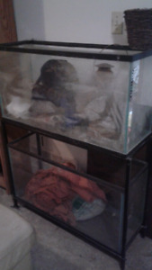 2 tanks no leaks have a chip and stand 150$