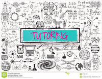 Effective Tutoring In Math,Physics,Chem & English for HS&College