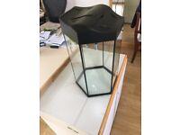 Glass Aquarium (fish tank)