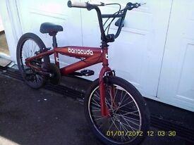 "BARRACUDA RED 20"" WHEELS BMX STUNT BIKE DOES 360 BRAND NEW BRAKES"