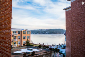 Executive Waterfront Living - 2 Bed. 2 Bath!