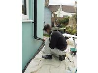 Professional Painter Decorator / Interior + Exterior Projects / 28yrs Experience / Sussex Area