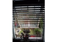 Venetian Blinds - Black Wooden - 50mm Slats - width 85cm drop 110cm