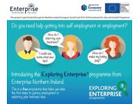 Exploring Enterprise Programme: The Ortus Group