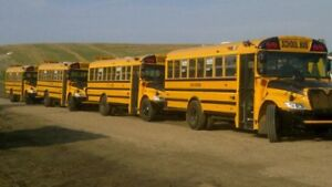 2013 International School Buses
