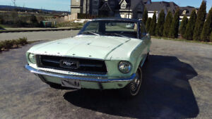 1967 Ford Mustang Coupe $17,000 OBO