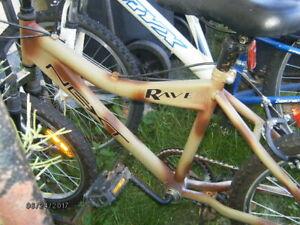 velo (bicycle) 20 pouces avec suspension