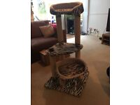 Cat beds and scratching posts