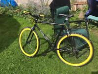 Everlast-Single Speed Bicycle - pick up in person!