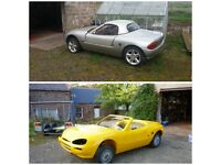 Minari Kit cars for sale - 1 complete and 1 part built
