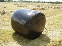 Large Black Bale Haylage for sale, ideal for sheep