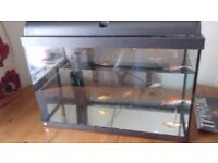 fish tank with 9 gold fish plus spare tank