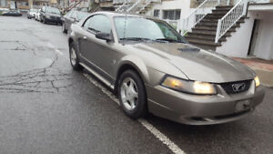2001 Ford Mustang Coupe SRS