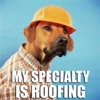 OTTAWA ROOFING SERVICES || GO HOME CONTRACTING