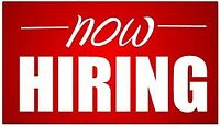 Server/Barista position available