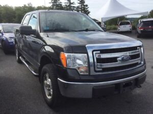 2013 Ford F-150 XLT - ONE OWNER!