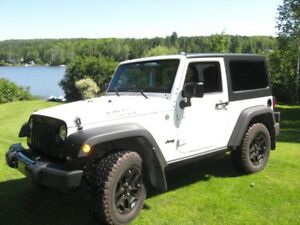 2014 Jeep Wrangler édition Willis Coupé (2 portes)
