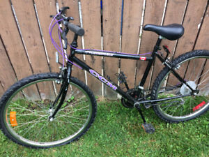 CCM 21 speed mountain bike, (26 Inch tires)