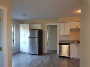 1br - Brand Newly Renovated 1 bedroom suites