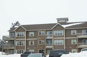 1 Bdrm available at 517-521 Malpeque Road, Charlottetown