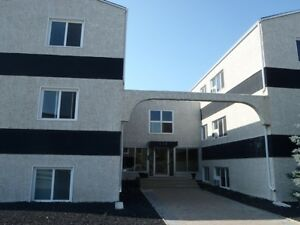 Gorgeous 2 Bdrm Condo for rent - pet welcomed!