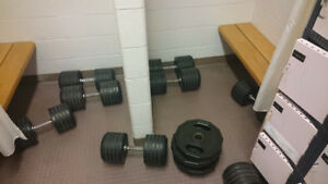 Dumbbells - many different weights