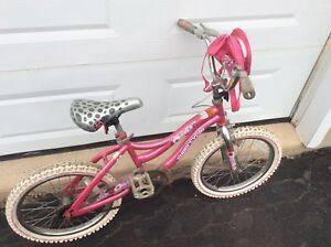 "Girls 20"" bike with training wheels, horn and in great shape!"
