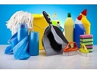 Domestic House Cleaner I can help you keep clean your house