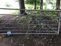 10ft galvanised gate