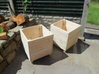 large square planters £25 each