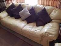 Sofa and armchair. £40 !!!