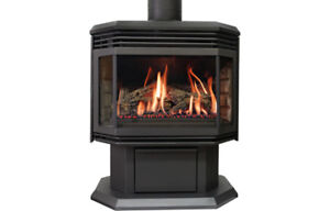 Get ready for winter - Warnock Hersey freestanding gas heater