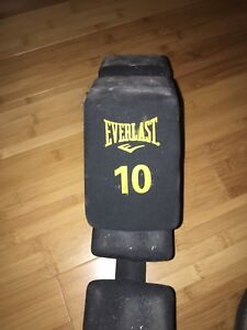 2 10 pound everlast weighs