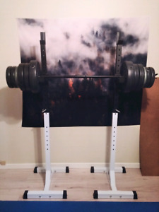 Squat rack/stand with 120lbs weight $175 OBO