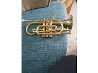 Trumpet jupiter