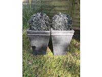 2 x faux buxus balls in pots