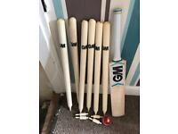 GM six6 cricket bat 2 wickets & ball