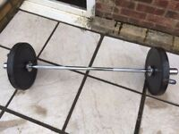 3 ft barbell with wieghts