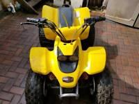 Quadzilla 100cc quad
