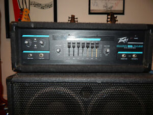 PEAVEY MARK 111 LIMITED EDITION 110/220