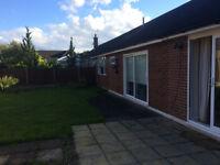 Room to rent in Beautiful Bungalow in Surrey GU8