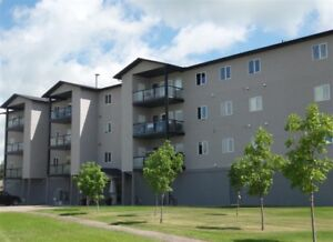 Executive style condo with furniture in Melfort!