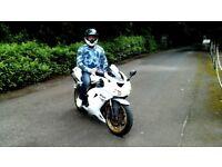 Kawasaki zx10 Honda Suzuki fireblade vtr sv
