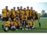 South West London 11 aside Football Players Wanted for Saturday Team