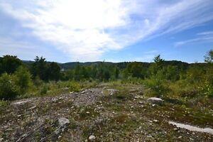 Terrain - à vendre - Saint-Faustin/Lac-Carré - 9841898