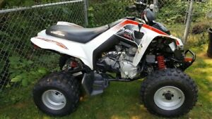 2009 Cam Am DS 250 cc - Approximately 30 hours