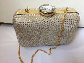 Monsoon evening bag