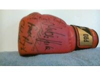 SIGNED BOXING GLOVES