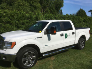 2013 Ford F-150 4x4 truck ecoboost